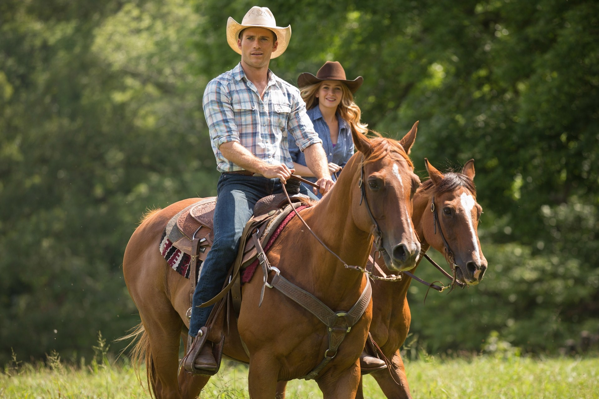 the longest ride 2015 chris and elizabeth watch movies
