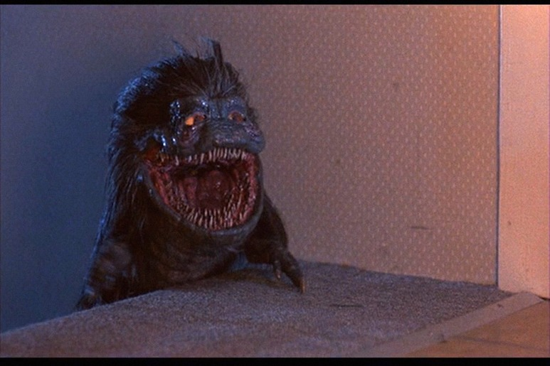Image result for CRITTERS (1986)