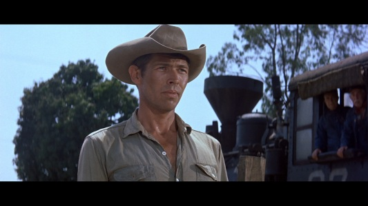 large_magnificent_seven_blu-ray2x